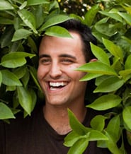 Paul-Angone-in-a-Tree -- Why Not?