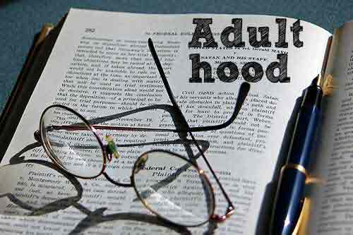 Adulthood-Instruction-Manual