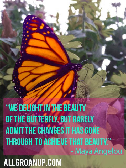 Maya Angelou Quote - The Changes of the Butterfly